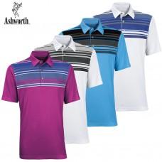 Ashworth Logo Golf Shirt